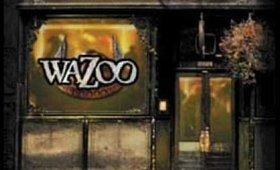 Wazoo un jour a l'ombrage