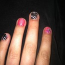 Zebra and Pink