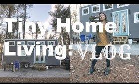 Tiny Home Living: VLOG