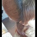 back comb
