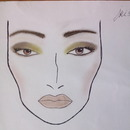 my first face chart