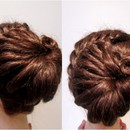 Modern Formal Braided Upstyle