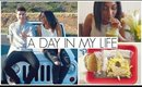 What I Wore | OOTD
