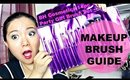 Makeup Brush Guide: BH Cosmetics 14 pc Party Girl Brush Set