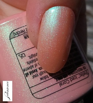 shellac_icedcoral