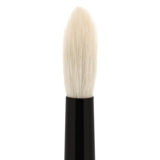 Brush 19 Eye Shadow Precision Blending Brush