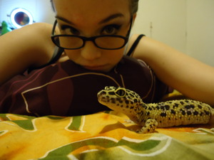 this is my gecko moose..(: