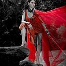Don Cristobal's: Sacred Fire