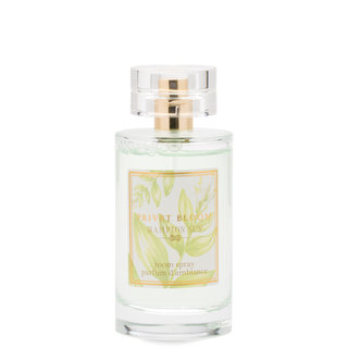 Hampton Sun Privet Bloom Room Spray