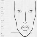 Facechart1
