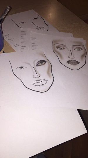 What do you think of these face charts? Please let me know