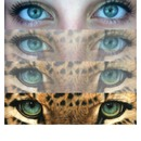 Eye transformation ❤👀