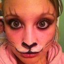 Kitty Make Up