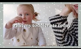 What My Toddler Ate Today | Rhiannon Ashlee