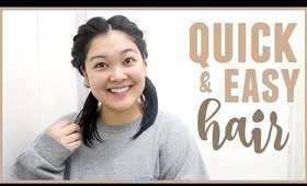 Quick & Easy Twisted Braid Hairstyle (GREAT FOR WET HAIR)