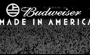 Made in America Music Festival 2013, Video & Pics of My Experience