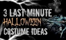 3 DIY Last Minute Halloween Costumes!