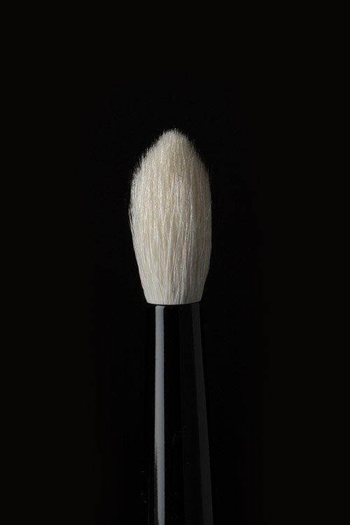 Brush 17 - Previously known as Brush 19, this brush does it all—from blending shadow deep into the crease of the eye to seamlessly concealing dark circles.
