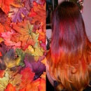 Fall Fiery Red Ombre