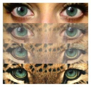 cat eyes. meeeeeeeeeeeow.