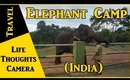Travel : Elephant Camp in Theppakkadu, Tamil Nadu (India) – Ep 146 | Life Thoughts Camera