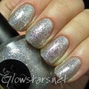 Nail Nation 3000 Silver Hologasm