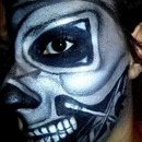 Terminator/Skull