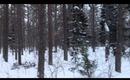 Vlog: 20.12.2012