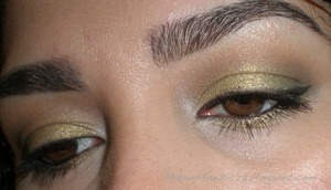 Green Smokey Eyes using Coastal Scents 88 Metal Mania & Warm Palette