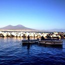 Another pic of Naples🇮🇹