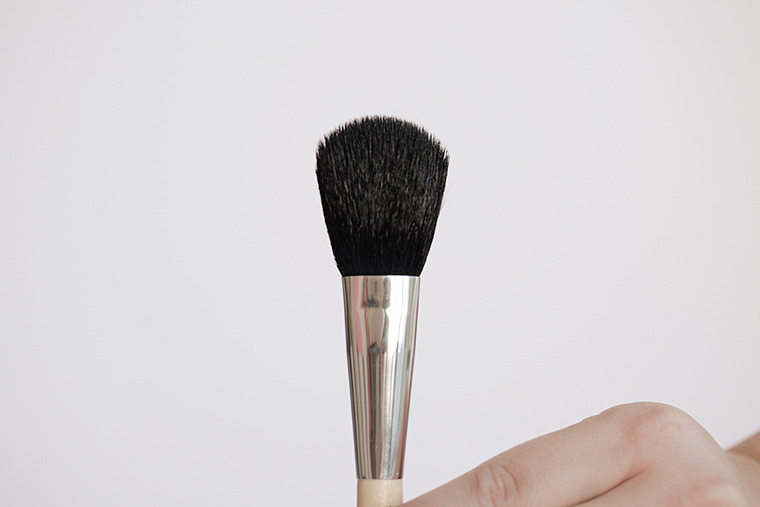 Your brush head should look clean