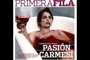 Primera Fila Cover 2011 Make up by Me