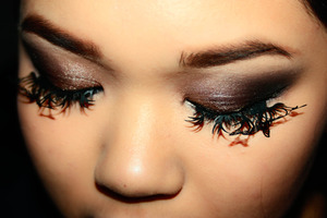 Using UD and Paperself Lashes
