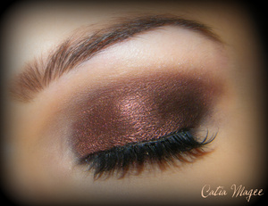 Using Pure Fusion Mineral Eyeshadows in  Mystical Fire all over the lid and blended up into the crease Lace on the tear duct and brow highlight