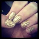 Cheetah-Licious