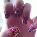 leopard rainbow nails