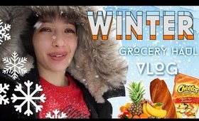 #Blizzard x #Grocery x #MirandaSings Vlog