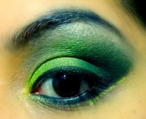 Green ombré eyeshadows. Add a red lipstick and you'll have a christmas/mistletoe look.