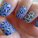 Blue and Grey Leopard