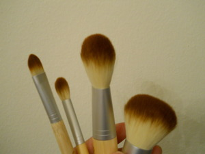 Ecotools Brush set gifted by a fellow blogger.