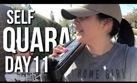 Self Quarantined Day 11 Vlog : He Cheated