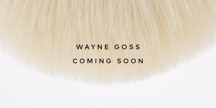 Wayne Goss Holiday Brush 2019 – Sign up for notifications!