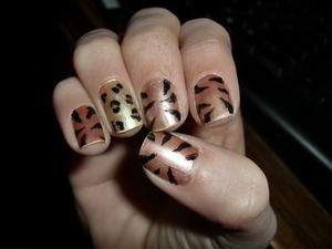 A few days after I did them..(chipping) just something cute and easy. tiger and cheetahhh