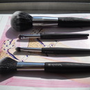 Rite Aid Renewal Brushes