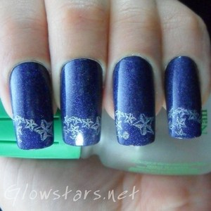 A mani done using Bundle Monster image plates. To find out more visit http://glowstars.net/lacquer-obsession/2012/09/the-digit-al-dozen-does-blues-stars