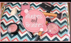 Top 5 Drugstore Blushes and Brushes