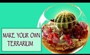 DIY room decor - Make your own terrarium!