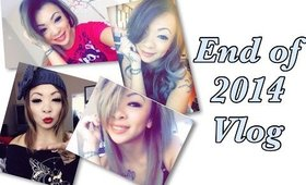 2014 End of the year [ Vlog ]
