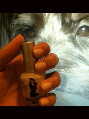 """theBalm Hot Ticket nail polish in """"Pale in comparison""""... nice shade for the spring. (that's my doggie on my Laptop backgroud)"""