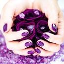 Purple ღ